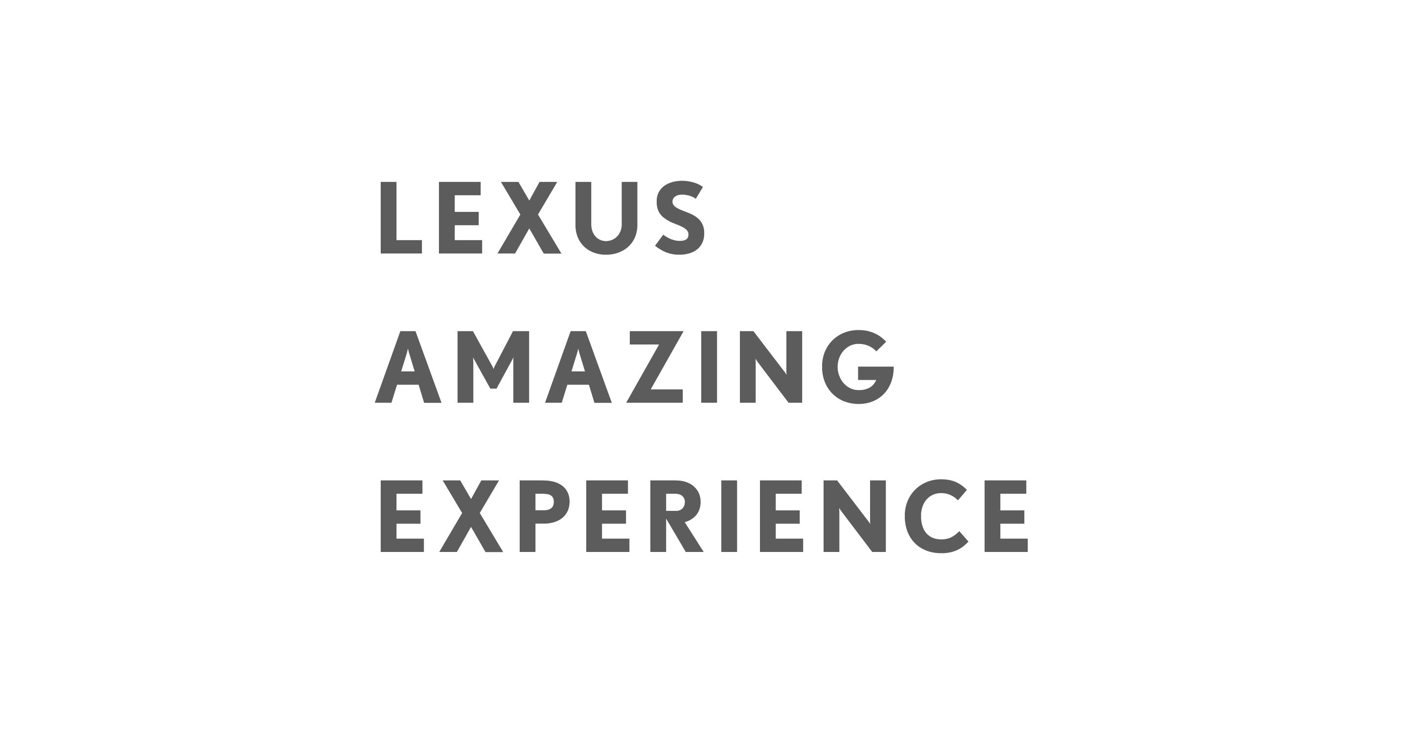 Amazing experience