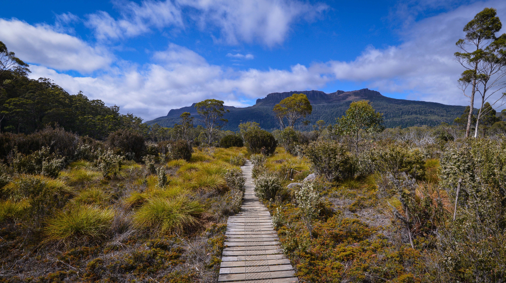 © Tasmanian Expeditions